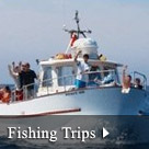 Fishing Trips - South Devon